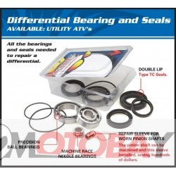 DB25-2062 Differential bearings and seals kit