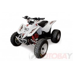 ACCESS DRR 100 RACE , WHITE